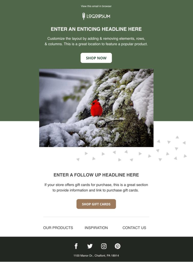 Green Cardinal Nature Email Template