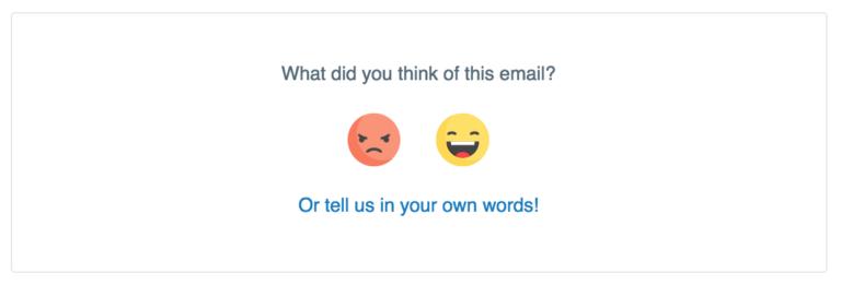 sentiment widget for email segmentation